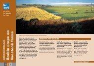 Arable crops on livestock farms advisory sheet (England) - RSPB