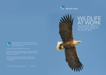 WILDLIFE AT WORK - RSPB
