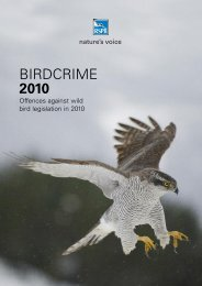 Birdcrime 2010: Offences against wild bird legislation in 2010 - RSPB