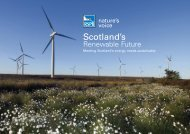 Scotland's Renewable Future - RSPB