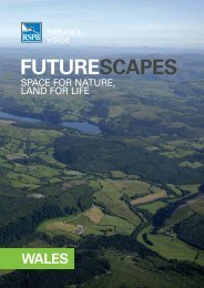Futurescapes launch document for Wales - RSPB