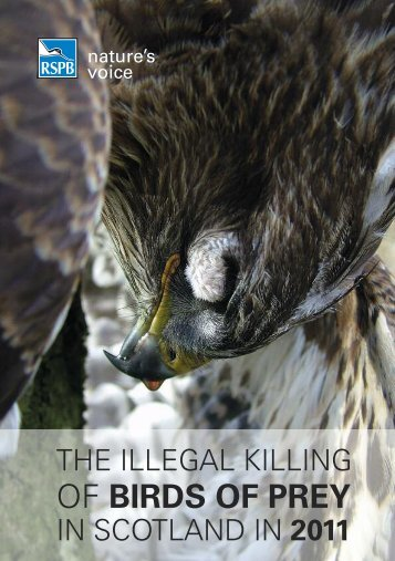 The illegal killing of birds of prey in Scotland 2011 - RSPB