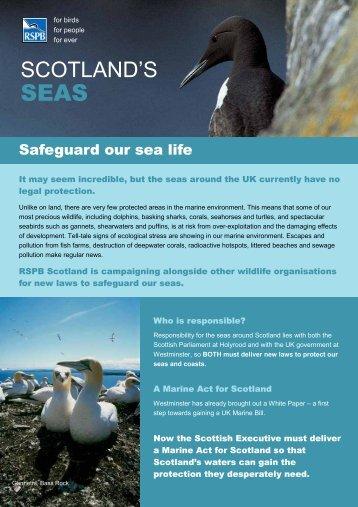 Scotland's seas - RSPB