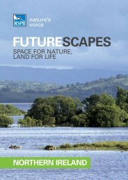 Futurescapes launch document for Northern Ireland - RSPB