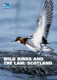 WILD BIRDS AND THE LAW: SCOTLAND - RSPB