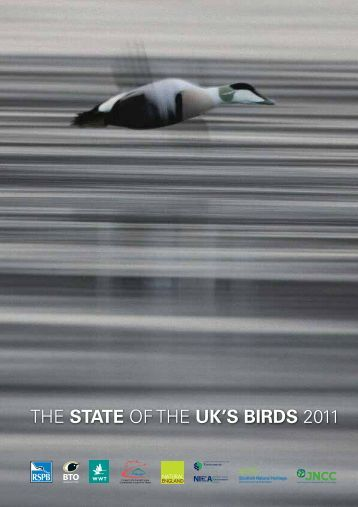 THE STATE OF THE UK'S BIRDS 2011 - RSPB
