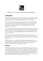 Response to the Law Commission Consultation Paper - RSPB