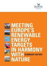 Meeting Europe's Renewable Energy Targets in Harmony with Nature