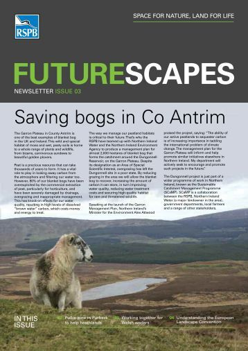 Futurescapes newsletter - Issue 3 - RSPB