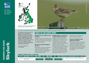 Skylark advisory sheet - RSPB