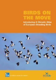 Birds on the move - RSPB