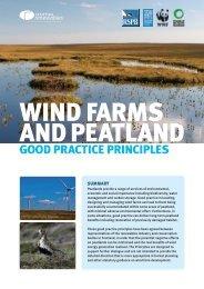 Wind Farms and Peatlands - good practice - RSPB