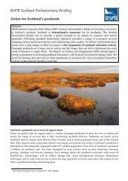 RSPB Scotland Parliamentary Briefing for action on Scotland's
