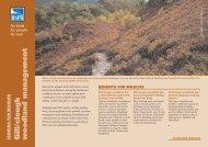 Gill/clough woodland management advisory sheet (England) - RSPB