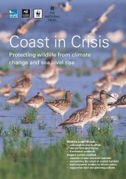 Protecting wildlife from climate change and sea level rise - RSPB