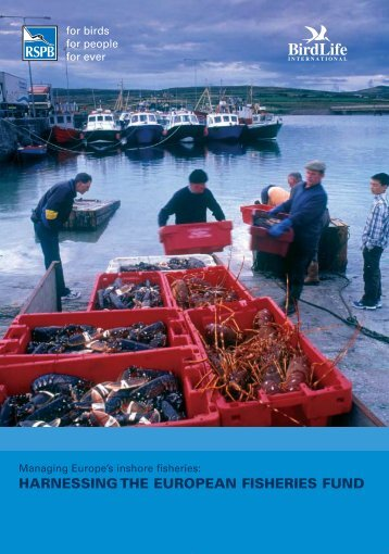 HARNESSING THE EUROPEAN FISHERIES FUND - Institute for ...