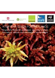 A 50-YEAR VISION FOR WETLANDS - RSPB