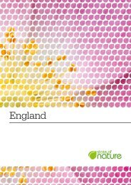 State of Nature report - England - RSPB