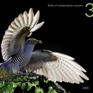 Birds of conservation concern 3 2009 - RSPB