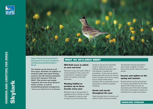 Skylark advisory sheet (Scotland) - RSPB