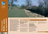 Buffer strips on grassland advisory sheet (England) - RSPB