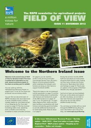 Field of View 11 - Northern Ireland - RSPB
