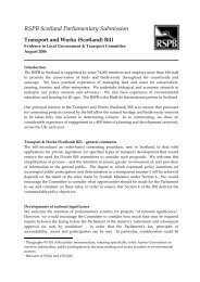 Transport and Works (Scotland) Bill - RSPB
