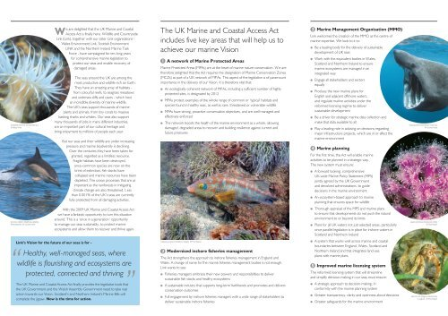 Our vision for the future of our seas - Wildlife and Countryside Link