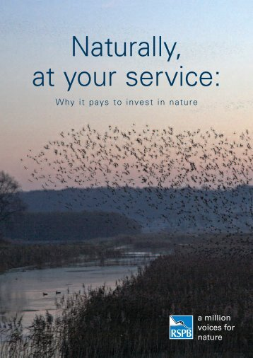 Naturally, at your service: - RSPB