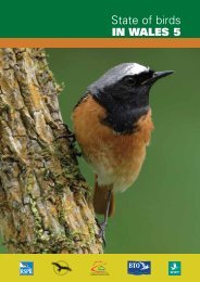 State of birds IN WALES 5 - Welsh Ornithological Society