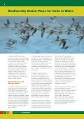 State of birds IN WALES 5 - Welsh Ornithological Society - Page 7