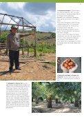 bag billigt eller økologisk hver tredje vare indeholder palmeolie - Page 5