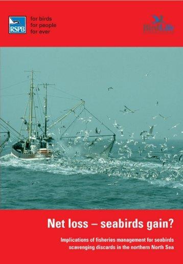 Net loss - seabirds gain? - RSPB