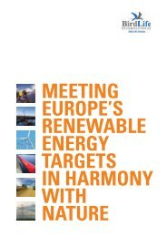 Meeting Europe's renewable energy targets in harmony with - RSPB