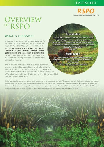 Overview of RSPO - Roundtable on Sustainable Palm Oil