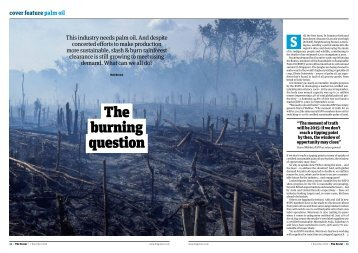 The burning question - Roundtable on Sustainable Palm Oil