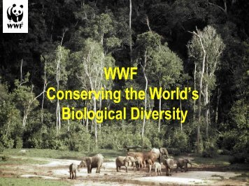 WWF Conserving the World's Biological Diversity - Roundtable on ...