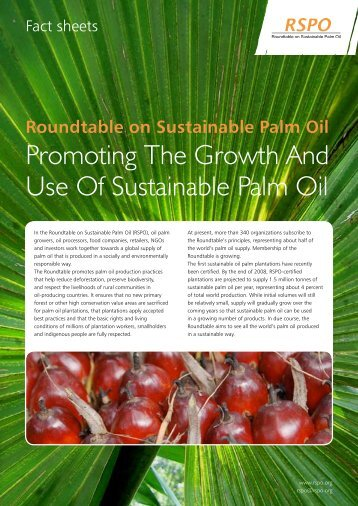 Promoting The Growth And Use Of Sustainable Palm Oil