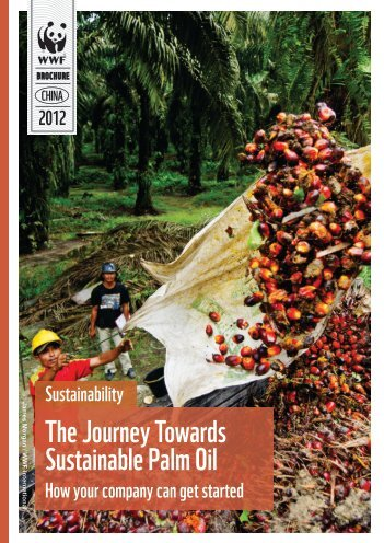 The Journey Towards Sustainable Palm Oil - Roundtable on ...