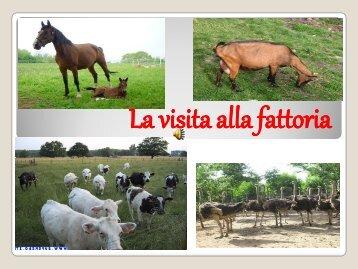 La visita alla fattoria
