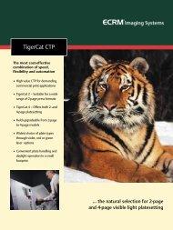 ECRM TigerCat 4