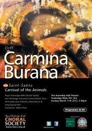 Orff Saint-Saëns Carnival of the Animals - Royal Tunbridge Wells ...
