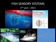 FISH SENSORY SYSTEMS