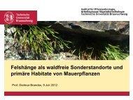 Felshänge als waldfreie Sonderstandorte und primäre Habitate von ...
