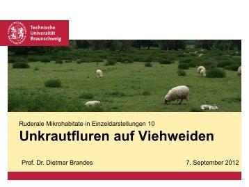 Unkrautfluren auf Viehweiden - Ruderalvegetation