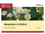 Neophyten in Osttirol - Ruderalvegetation