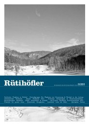 Januar 2013 - Rütihöfler Chronik