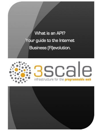 What is an API? Your guide to the Internet Business - 3Scale