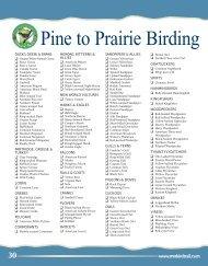 Pine to Prairie Birding