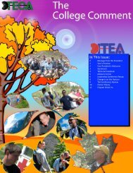 In This Issue: - International Technology and Engineering Educators ...
